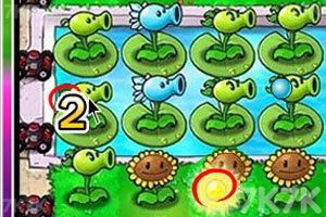 《植物大战僵尸之整理后花园》游戏画面7