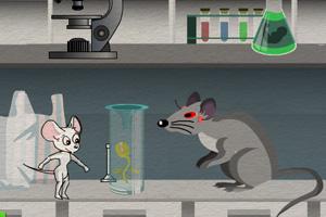 女白鼠逃离实验室