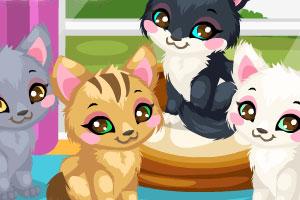 《照顾猫猫2》游戏画面1