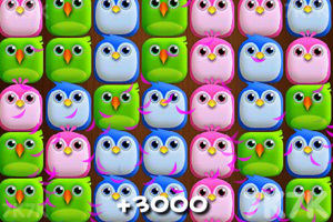 《小鸟爆破电脑版》游戏画面2