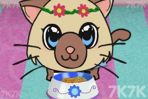 《小猫咪的快乐生活》截图1