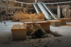 《逃出废弃商场》游戏画面1