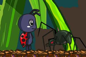 小瓢虫历险记