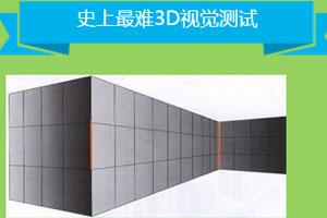 《史上最难3D视觉测试》游戏画面1