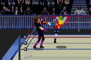 《WWF疯狂摔角》游戏画面1