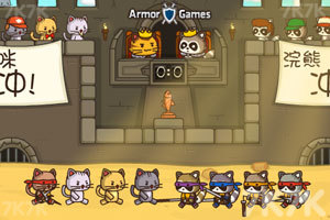 《猫咪竞技场中文版》游戏画面1