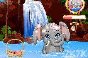 《给小象洗澡》游戏画面4