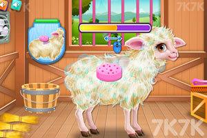 《照顾小羊宝宝》游戏画面3