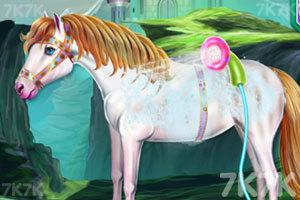 《清洗我的小马车》游戏画面3