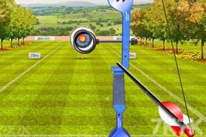 《世界射箭錦標賽》游戲畫面6