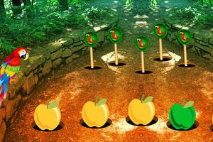 《逃离金刚鹦鹉森林》游戏画面1