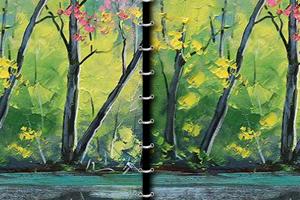 《美妙森林找不同》游戏画面1