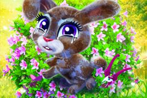 《照顾开心小兔》游戏画面2