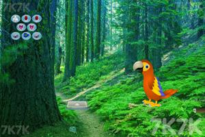 《拯救金刚鹦鹉》游戏画面1
