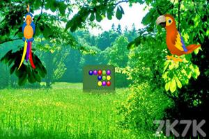 《拯救金刚鹦鹉》游戏画面3