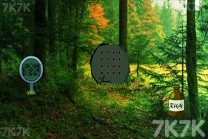 《森林木鸭救援》游戏画面2