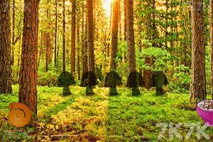 《后院森林逃生》截图3