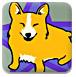 小狗跳水锦标赛