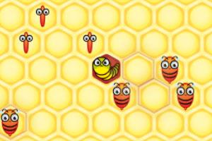 小蜜蜂采蜂蜜