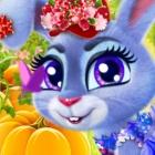 照顾开心小兔