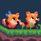 双狐大冒险